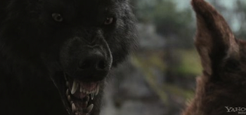 Werewolves, The Twilight Saga Breaking Dawn Part 1 2011