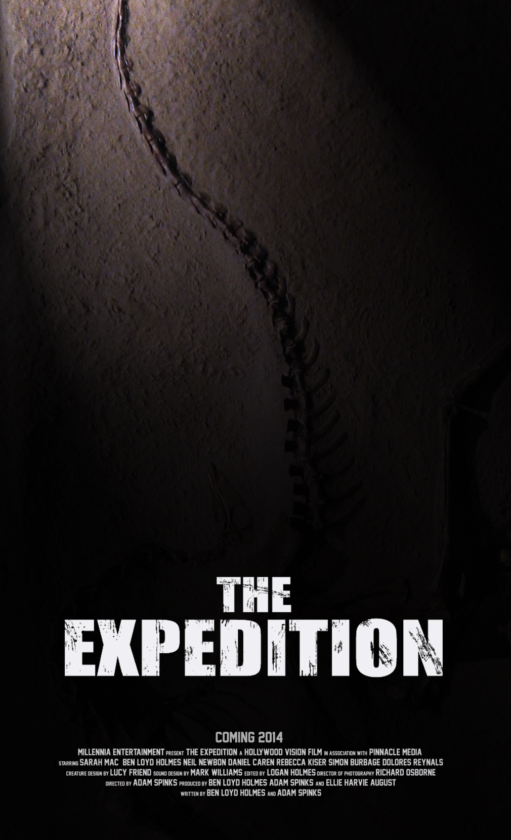 The Expedition movie poster