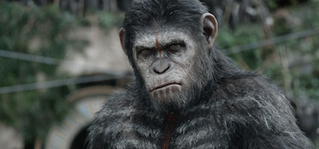 caesar-dawn-of-the-planet-of-the-apes-02-350x164