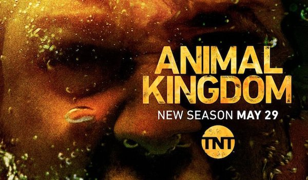 Animal Kingdom Season 3 TV Show Poster