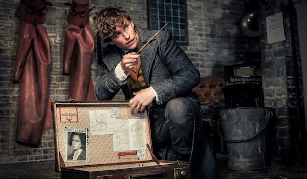 Eddie Redmayne Fantastic Beasts: The Crimes of Grindelwald