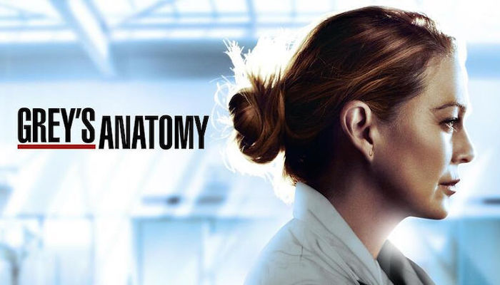 Greys Anatomy Season Seventeen Tv Show Poster