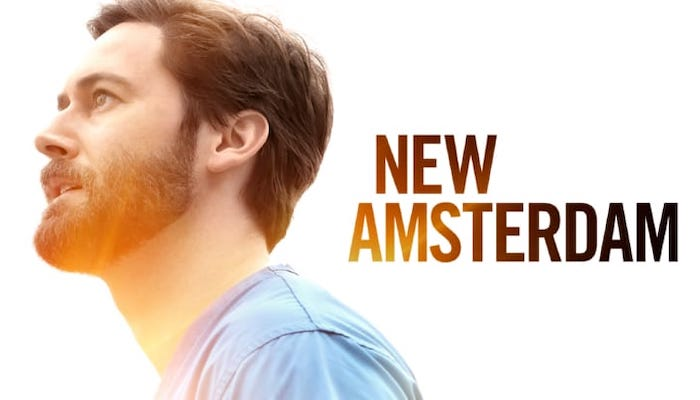 New Amsterdam Tv Show Poster Banner